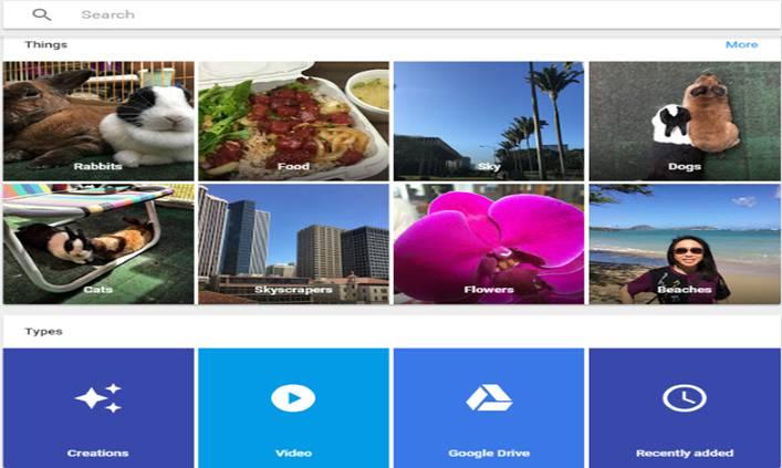 Sortarea și căutarea fotografiilor Google